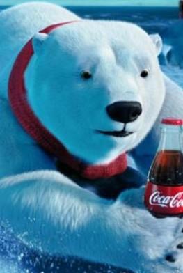 Les Ours Coca-Cola, le film (2012)