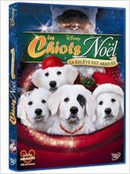 Les Chiots Noël, la relève est arrivée
