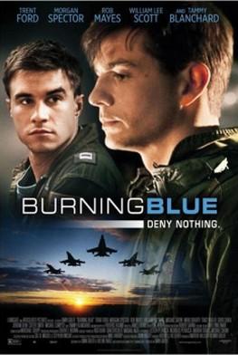 Se brûler les ailes (2013)